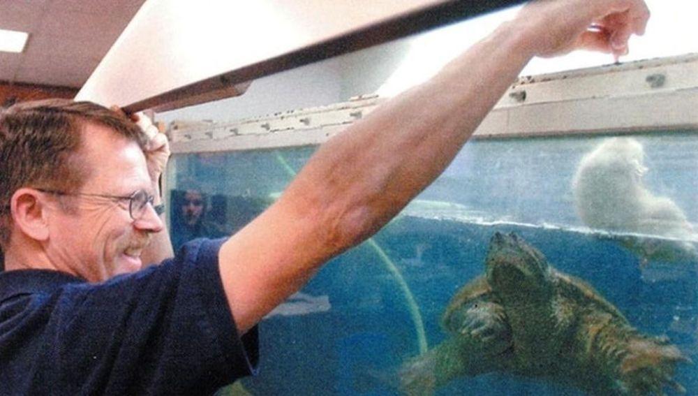 El profesor alimentando a la tortuga