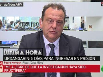 """Entrevista completa a Pedro Horrach, fiscal del 'caso Nóos': """"No se han recibido presiones ni insinuaciones de ningún tipo"""""""