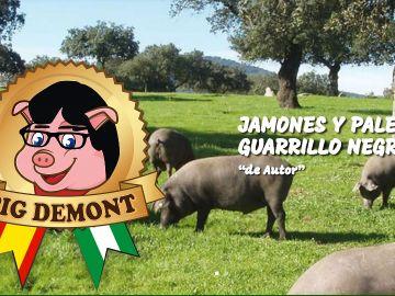 Logo de la página web de Pig demont