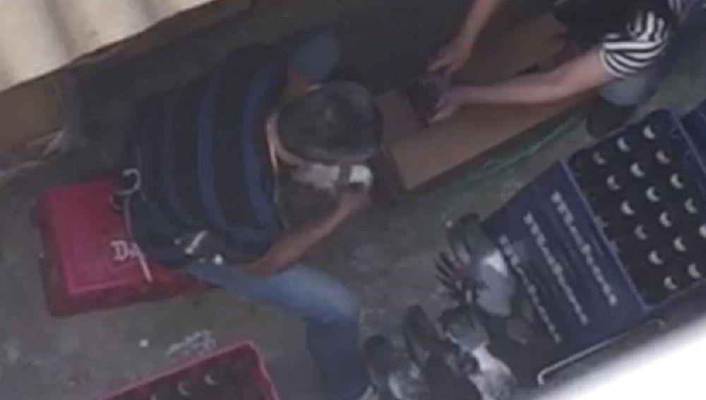 Imagen del vídeo en el que los trabajadores matan palomas