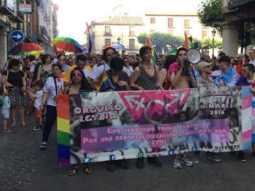 Manifestantes en Alcalá de Henares por la igualdad de los trans