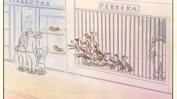Paco Catalán, el dibujante que denuncia el maltrato animal con sus viñetas