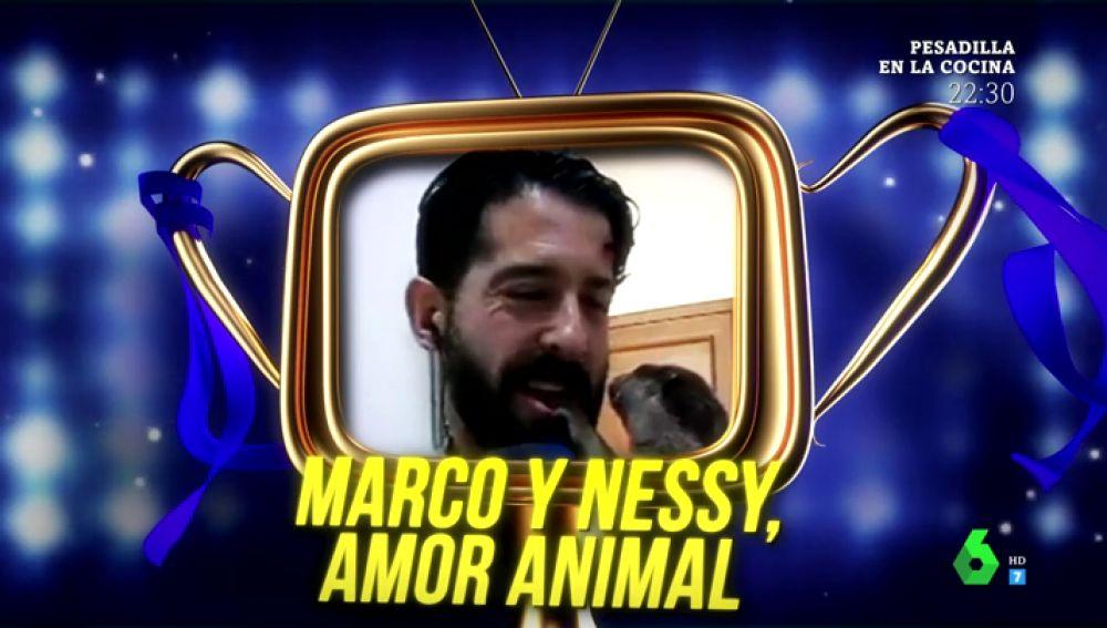 'Marco y Nessy, amor animal' se convierte en el tercer ganador del premio Zapeando al mejor reportero