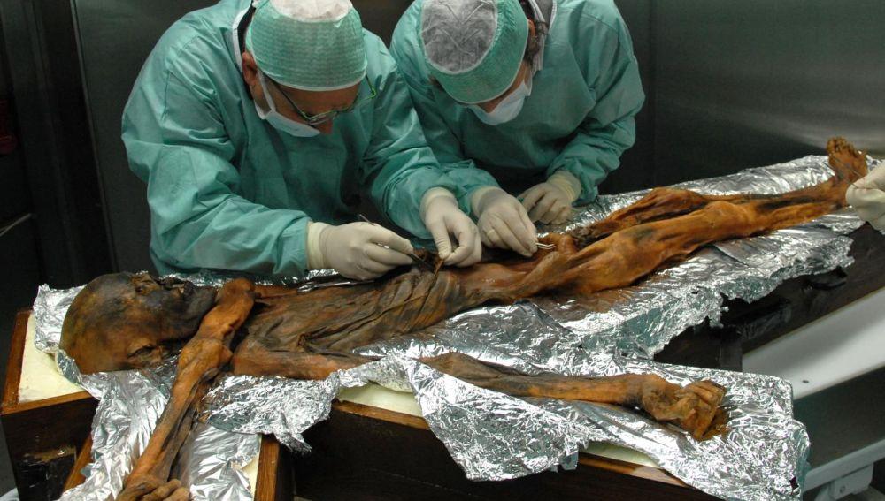 El ultimo banquete de Oetzi arroja luz sobre la alimentacion de hace 5.000 anos