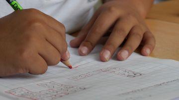 Identifican mas de 1.200 genes asociados al exito educativo