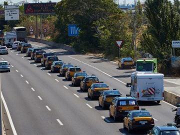 Cientos de taxistas participaron en la marcha lenta