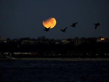 Imagen de archivo de un eclipse