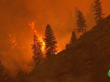 incendio Californa