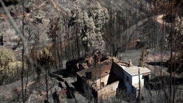 Imagen de las consecuencias del incendio en Portugal