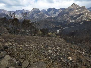 Imagen del incendio controlado en Llutxent
