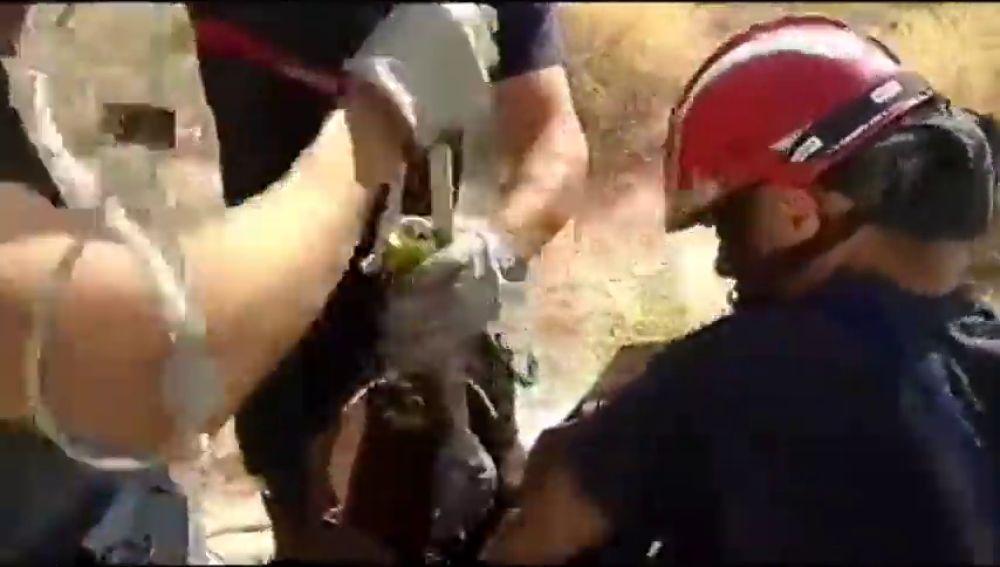Rescatan a unos cachorros que fueron arrojados a una tubería en Murcia