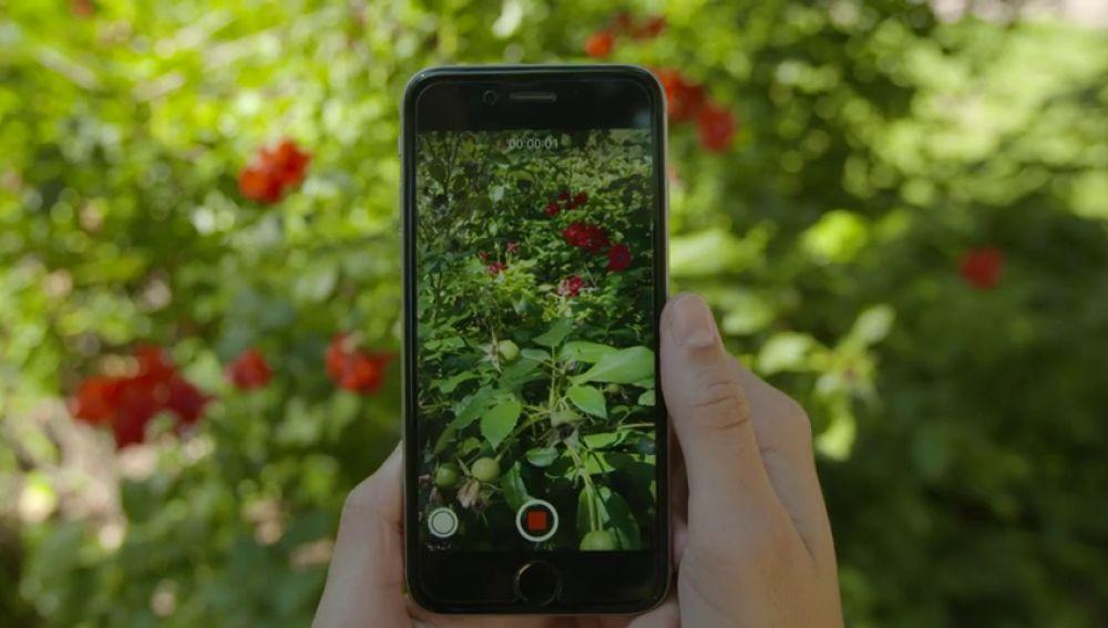 Hacer fotos con tu iPhone mientras estás grabando un vídeo ya es posible