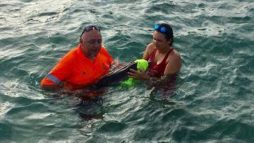Protección Civil rescata una cría de delfín en La Manga
