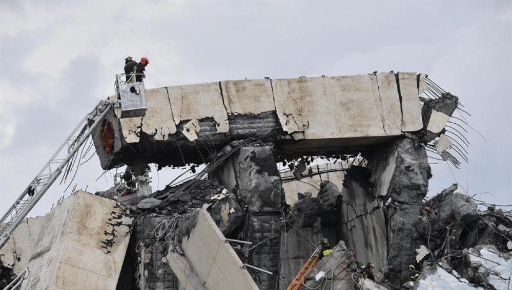 Miembros de los servicios de rescate trabajan en la búsqueda de víctimas tras el derrumbe de un puente en Génova (Italia)