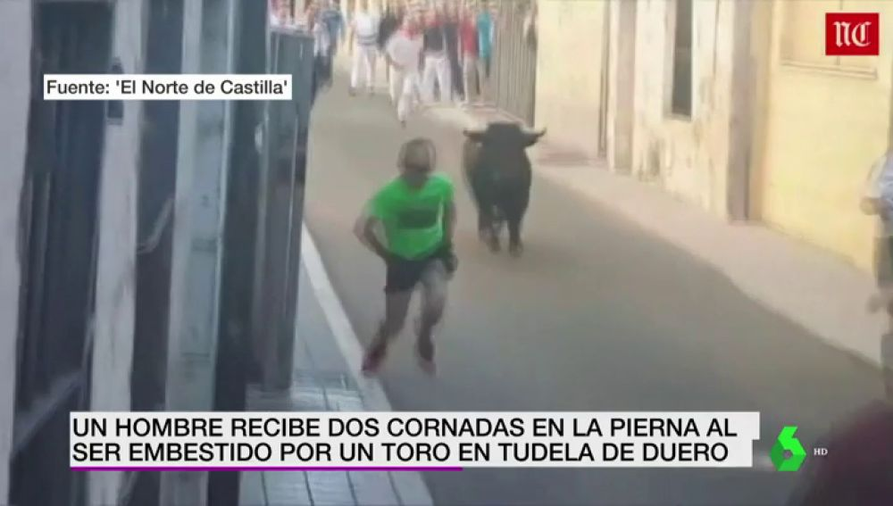 Un toro embiste a un hombre que corría con las manos en los bolsillos en Tudela del Duero, Valladolid
