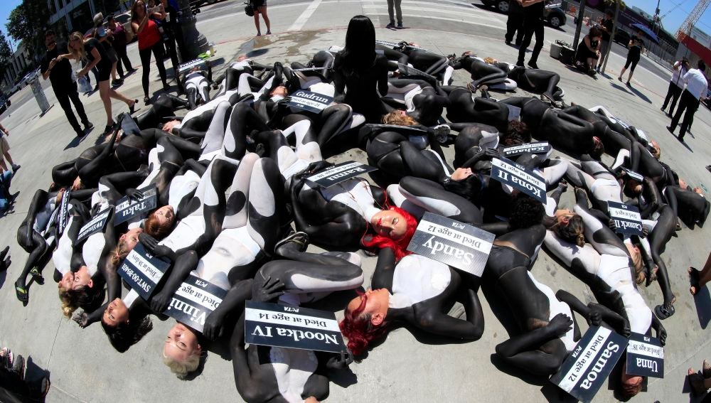 Grupo de ambientalistas que exige la protección de las orcas