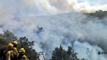Incendio en Cabezuela del Valle