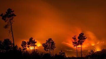 Incendio en Monterrei, Galicia