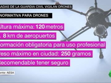 BORRADOR El 'Equipo PEGASO': una brigada de la Guardia Civil para controlar el uso de los drones