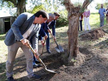José Miguel Cedillo planta un olivo acompañado de Julen Mendoza