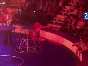 Una tigresa sufre convulsiones en el circo