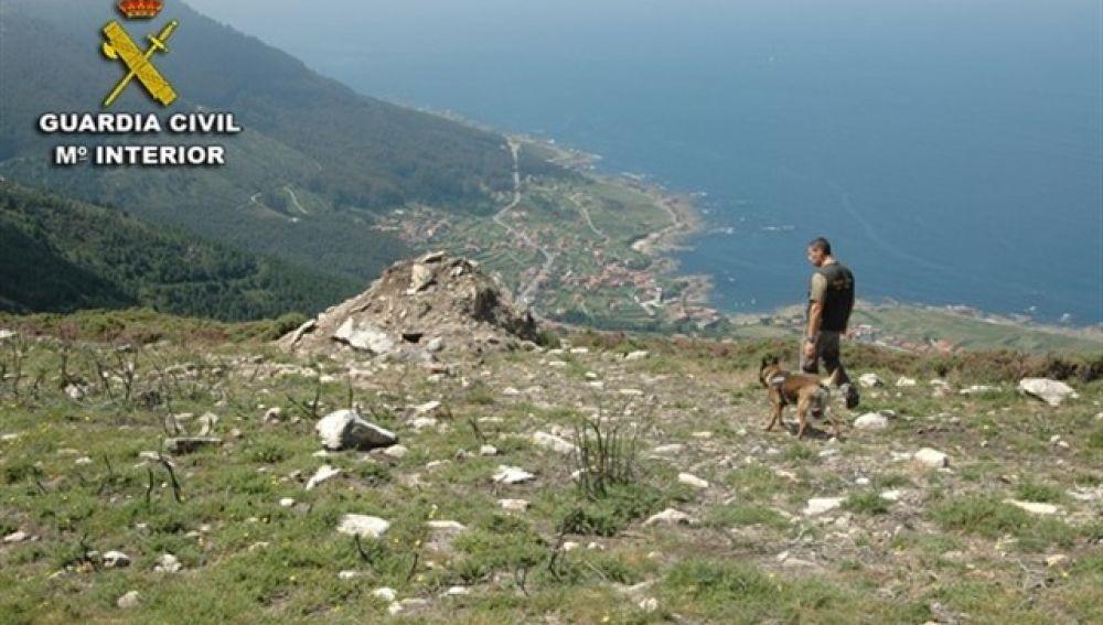 Un guardia civil y un perro de la patrulla canina en el monte