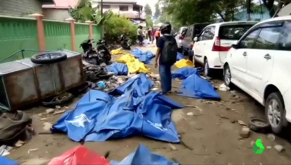 Consecuencias del terremoto de Indonesia que ha dejado más de 400 muertos