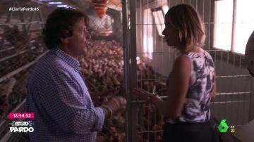 ¿En qué se diferencian los huevos de las gallinas en jaula, en suelo, camperas o ecológicas?