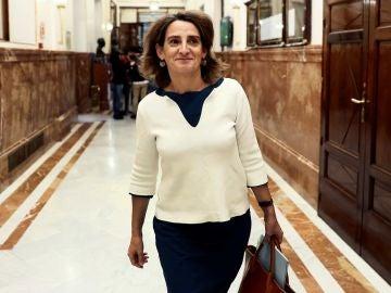 Teresa Ribera en el Congreso de los Diputados