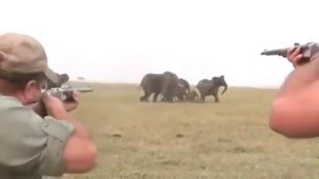 Cazadores disparando a elefantes en África