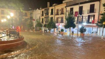 Campillos inundado