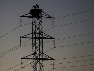 Imagen e archivo de una torre de un tendido eléctrico