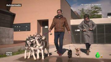 De la llamada de Rajoy a recoger cacas de perro: así fue el 'Servicio Público' de Maíllo al ritmo de Clavelitos
