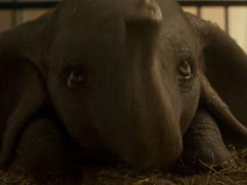 Casi 80 años después Dumbo vuelve a volar: Tim Burton rescata el clásico de Disney