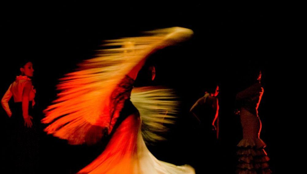 Imagen de archivo de flamenco