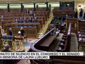 Minuto de silencio en el Congreso por Laura Luelmo