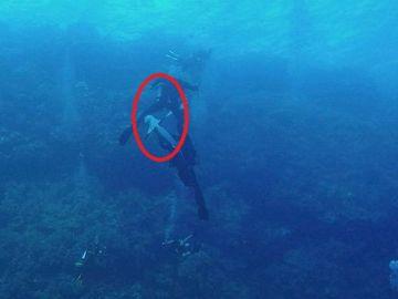 El ataque de un tiburón