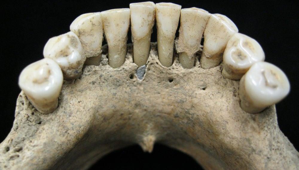 Los dientes azules de la primera artista de ilustraciones medievales