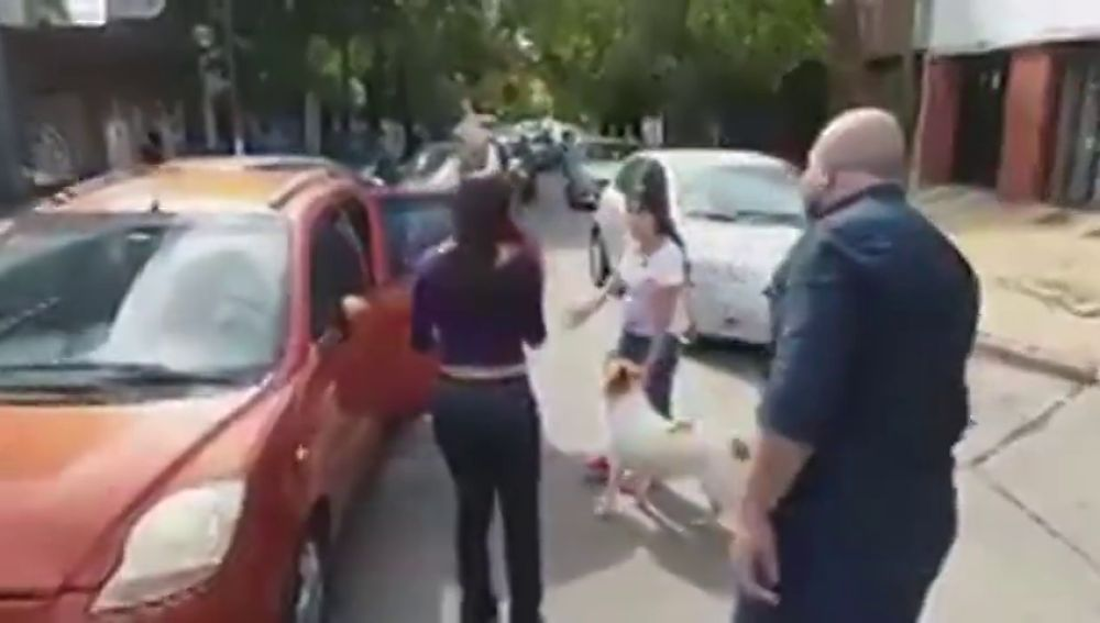 Un hombre evita el abandono de un perro en medio de la carretera