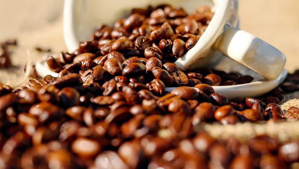 Imagen de archivo granos de café