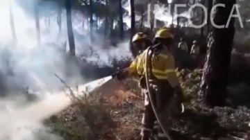 Efectivos del INFOCA realizan quemas controladas