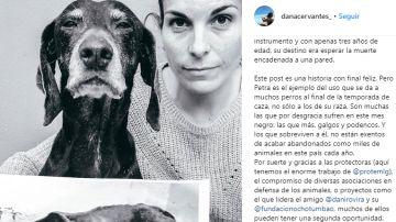 La imagen de Dana Cervantes
