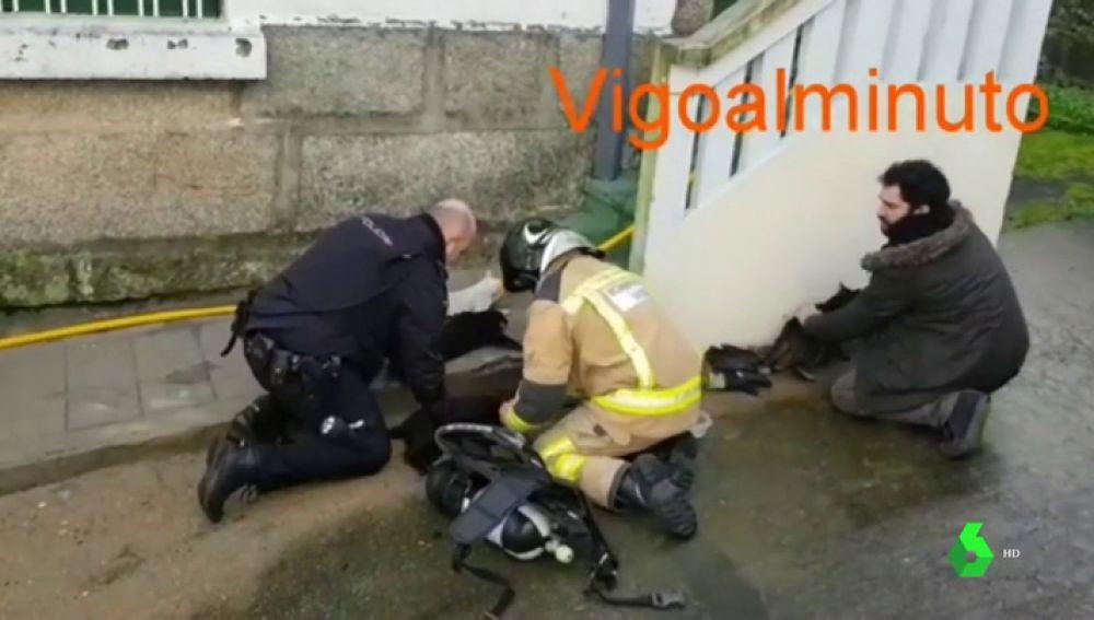 La Policía y los bomberos rescatan y reaniman a seis gatos atrapados en un incendio en Vigo