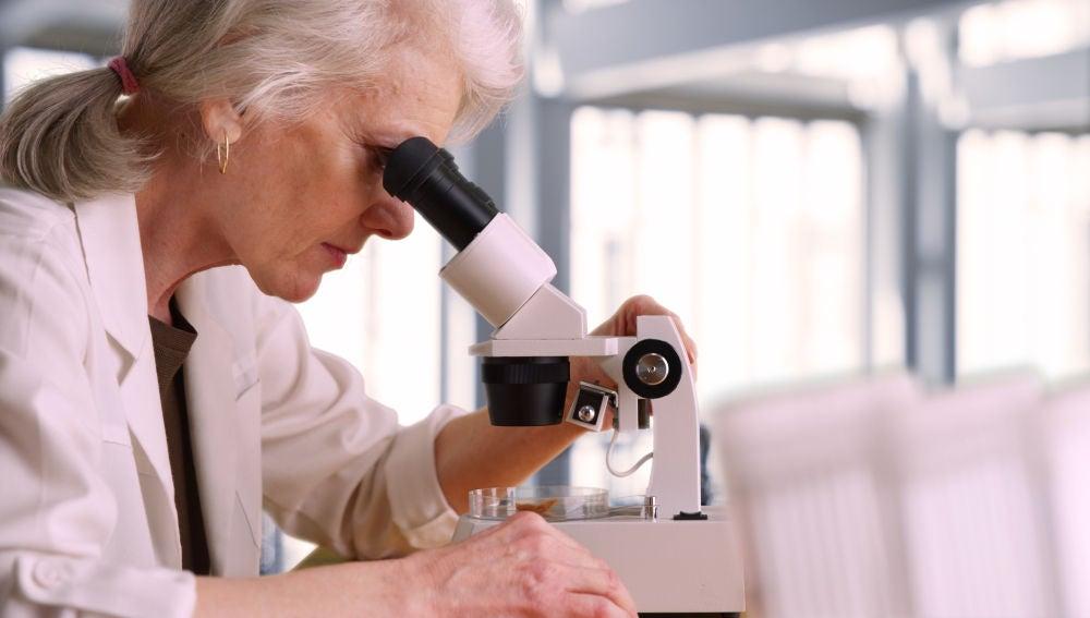 Persisten los obstaculos para que las mujeres accedan a los altos cargos en ciencia