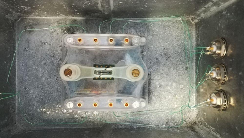 Montaje del chip de silicio empleado dentro de la caja que será introducida en el incubador