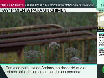 La Guardia Civil halló spray pimienta en las vallas con las que le tendieron la trampa a Javier Ardines