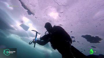 ¿Cómo es bucear bajo el hielo?: así se practica uno de los deportes más extremos que existen