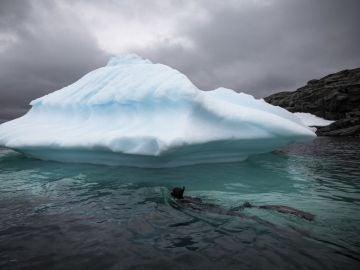 Buceando en un iceberg (27-02-2019)