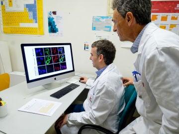 Investigadores en un laboratorio de la Universidad de La Rioja