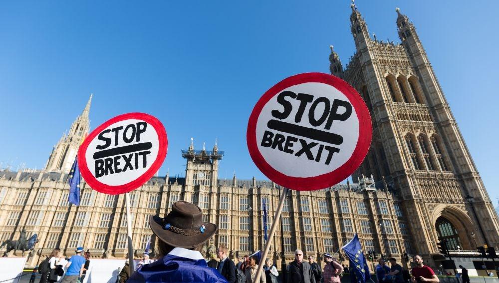 Un hombre se manifiesta contra el ''brexit'' durante una protesta en el exterior del Parlamento británico